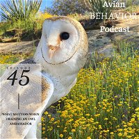 Grief, Empathy, and Animal Relationships