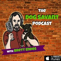 Episode 95 - Structure for Puppies