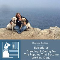Breeding & Caring For The Puppies That Become Working Dogs