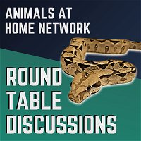 1: Round Table | Do you NEED to go Bioactive? The Responsibility of Reptile YouTubers