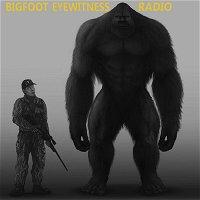 Bigfoot Eyewitness Episode 249