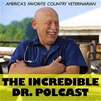 The Incredible Dr. Polcast – S2; Ep. 1: Fatherhood – It takes a village! S2; Ep. 1: Fatherhood: It Takes A Village!