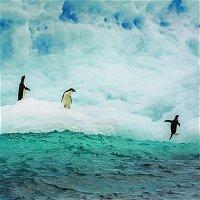 Secrets of the South Pole