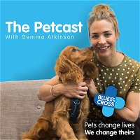 Welcome to The Petcast